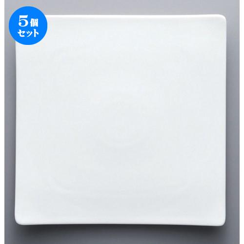5個セット☆ ボーダーレススタイル ☆Arctic NT25cm正角皿 [ 25.2 x 3cm 972g ] 【 ホテル レストラン 洋食器 飲食店 業務用 】