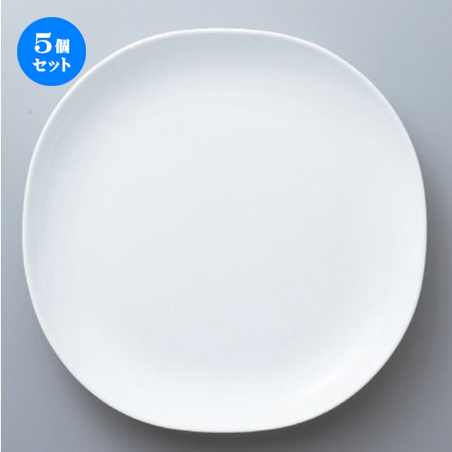 5個セット☆ ボーダーレススタイル ☆白磁カレ大皿 [ 25.4 x 25.4 x 3.2cm 741g ] 【 ホテル レストラン 洋食器 飲食店 業務用 】