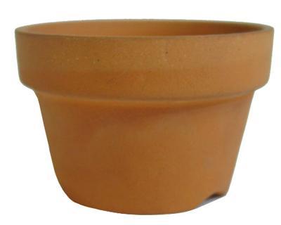 2.3号受け皿と相性 植木鉢 2号 朱温鉢 浅鉢 素焼 日本製 定番 正規品