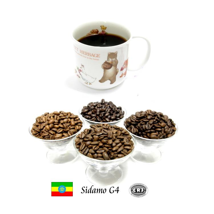 香り豊かなナチュラル精製のモカ 99.9%カフェインフリー オーダーメイド デカフェ 限定モデル モカ シダモG4 高い素材 エチオピアモカ エチオピア カフェインレスコーヒー 100g ディカフェ