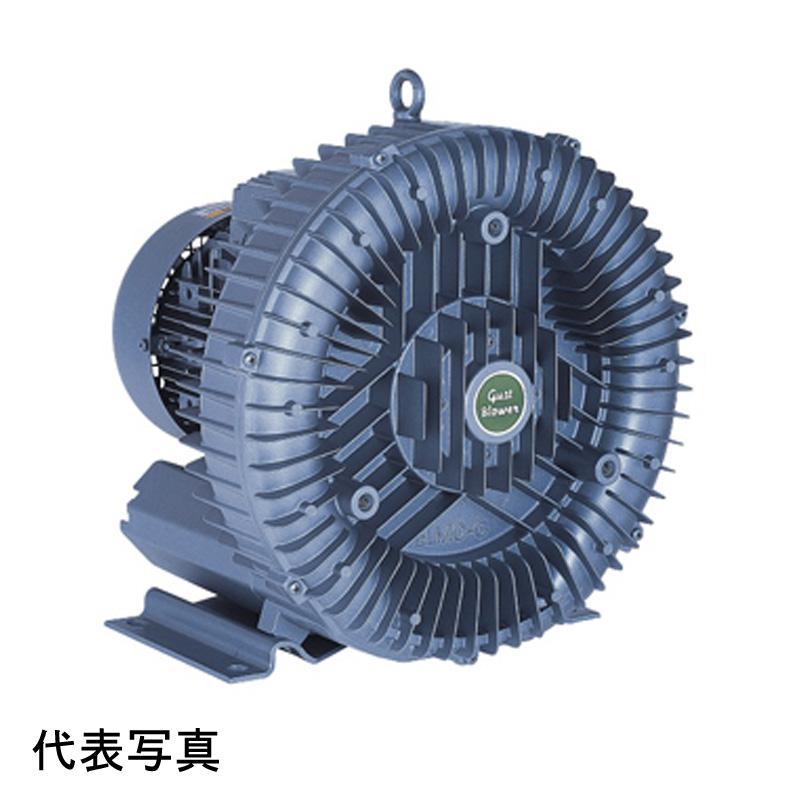 昭和電機 送風機 U2S-220 渦流式高圧シリーズ ガストブロア 2.2/3.5kW(50/60Hz) 三相200V 50/60Hz対応