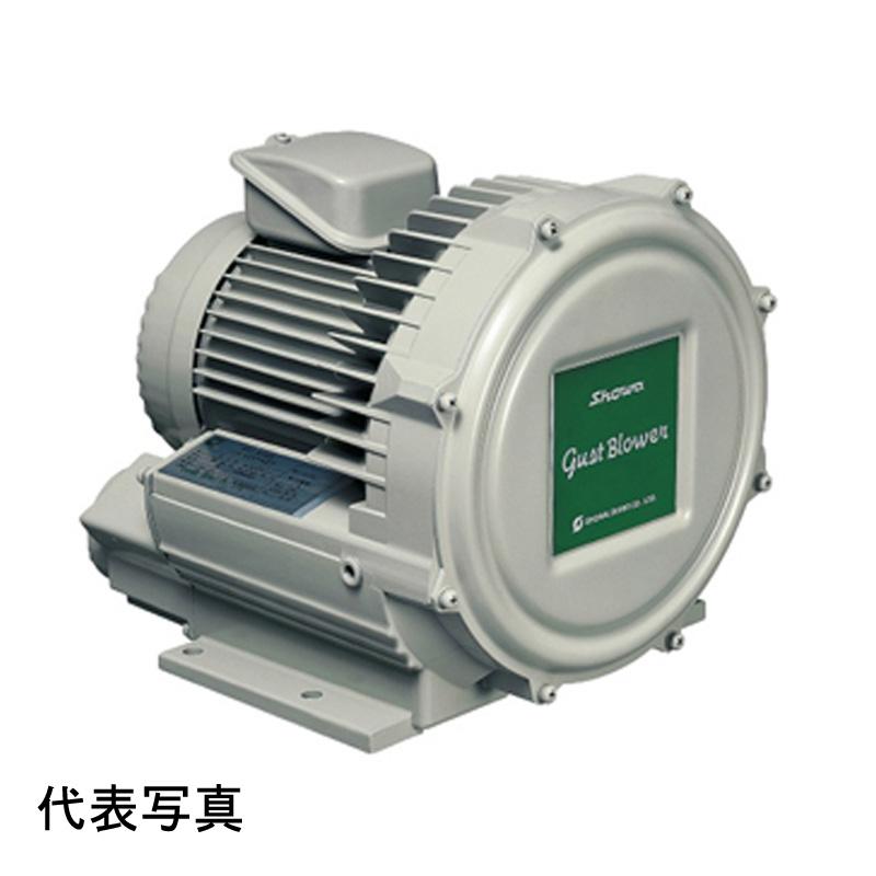 昭和電機 送風機 U2V-70T 渦流式高圧シリーズ ガストブロア 0.75kW 三相200V 50/60Hz対応