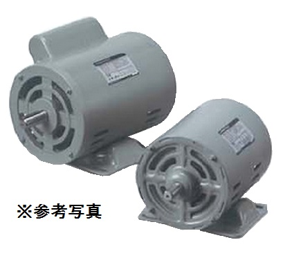 一宮電機 単相モータ AES-FBF4P250W AC100V分相始動式 全閉外扇形 標準形 モーター