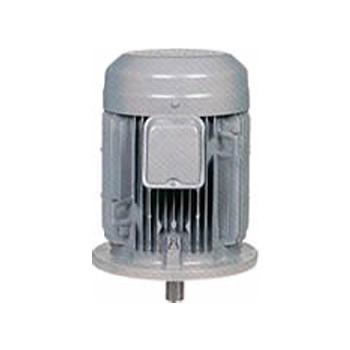 三菱電機(ミツビシ)三相モータ SF-PRVO-0.75kW-2P-400V全閉外扇 屋外仕様 立形 ブレーキ無し