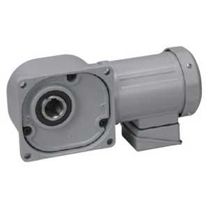 ニッセイ ギアモータ 中空軸 FS45N40-MD08TNNTB2 0.75kW 三相200V 標準ブレーキ付