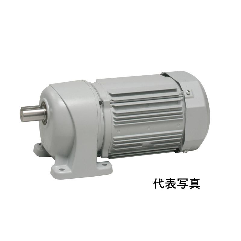 【生産終了品】G3L50N160-MP15TWNTN ニッセイ 平行軸 標準タイプ 三相 脚取付 ブレーキ無し AC400V 1.5kW