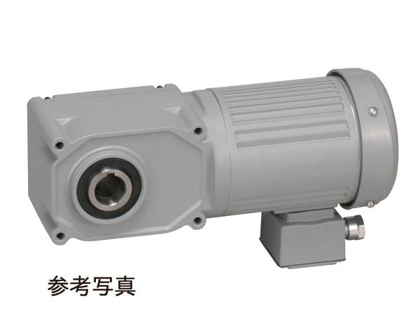 F3SM-35-375-T020A ニッセイ 中空軸タイプ 標準仕様 モータ付 ブレーキ無し 三相 0.2kW 端子箱付