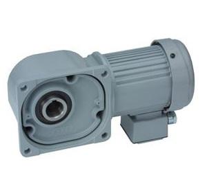 FSM-30-12.5-200 ニッセイ 中空軸タイプ 標準仕様 ブレーキ無し 単相 200W