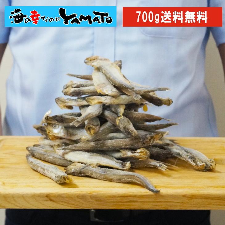 訳あり 子持ちシシャモ一夜干し たっぷり700g ししゃも 柳葉魚 干物