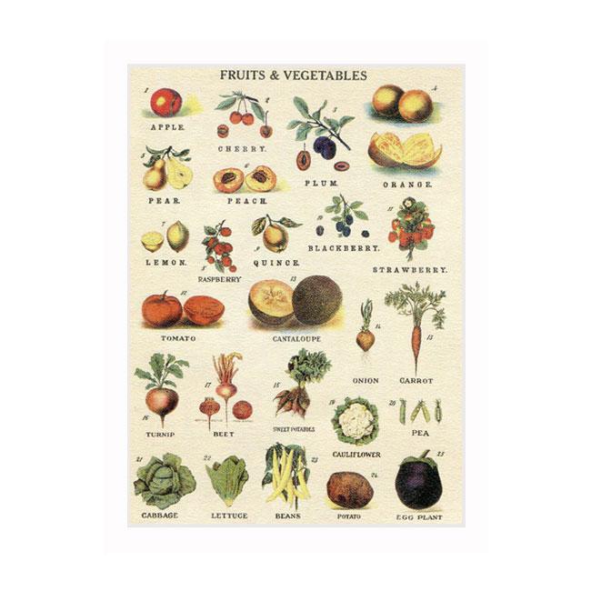 Cavallini Series/Fruits & Vegetables