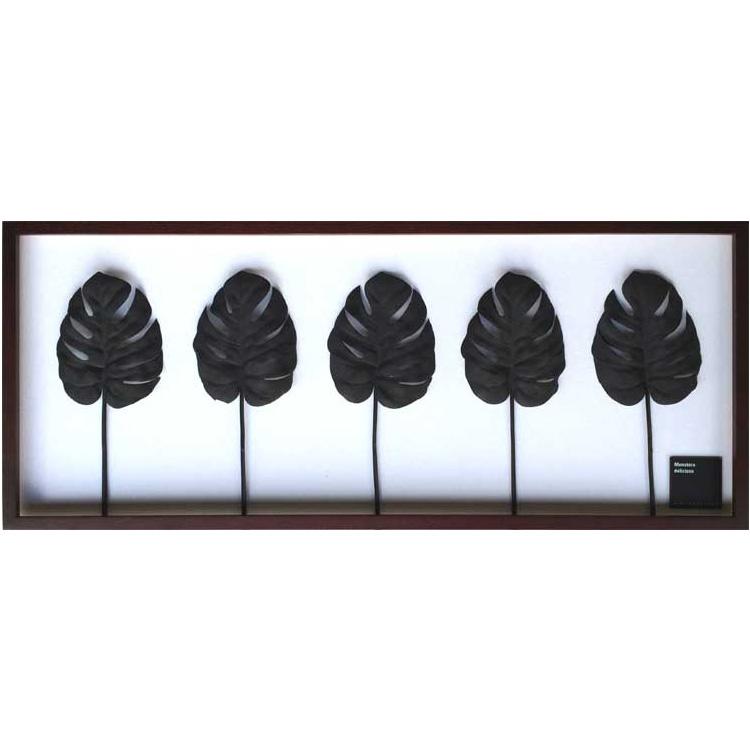 F-Style Frame Monstera deliciosa/Black ≪リーフパネル≫ エフスタイルフレーム モンステラデリシオサ ブラック
