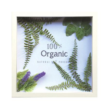 ついに入荷 バーゲンセール キャンパス地に模造の植物を配置したフレーム 100%Organic FRAME ORGANIC