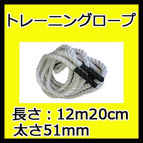 【NISHI ニシ・スポーツ】パワーロープ 1000g T7783C なわとび ジャンプロープ ウエイトロープ