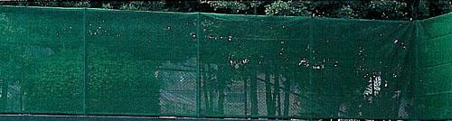 「ポイント2倍+クーポン付与!11/10(土)23:59まで」【防風ネット】evernew 防風ネット EKE061