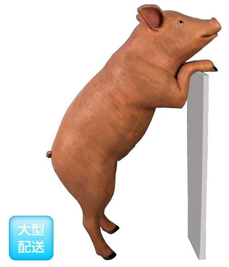 好奇心の旺盛な豚・ブラウン【CARUNA】