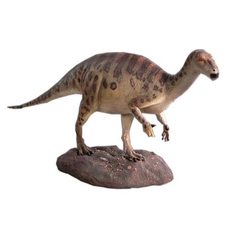 ベイビーイグアナドン/Baby Iguanodont【CARUNA】