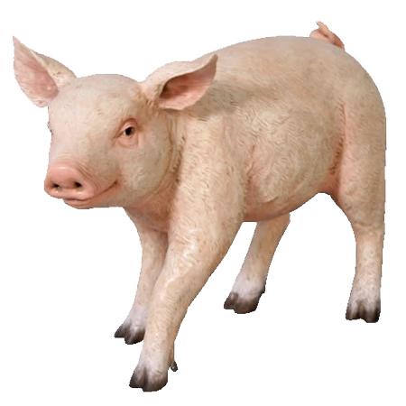 まるまるした子豚【CARUNA】
