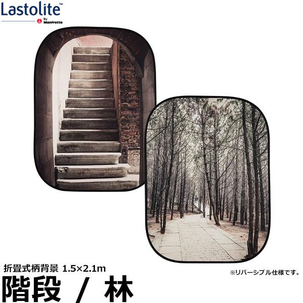 【送料無料】 Lastolite LL LB5740 折たたみ式柄背景 1.5mx2.1m 階段/林 [プリント背景/ラストライト]