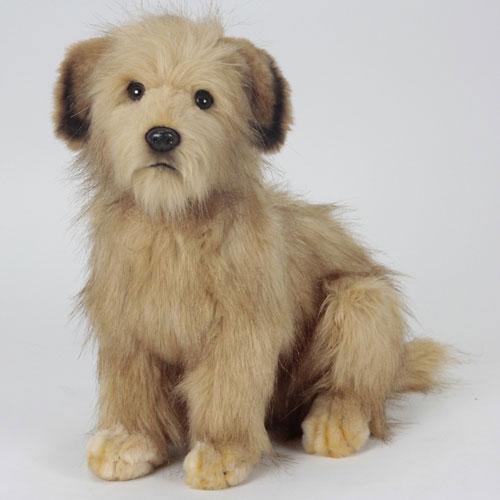本物みたいなイヌのぬいぐるみ ノーフォークテリア 通販 まとめ買い特価 激安 45cm