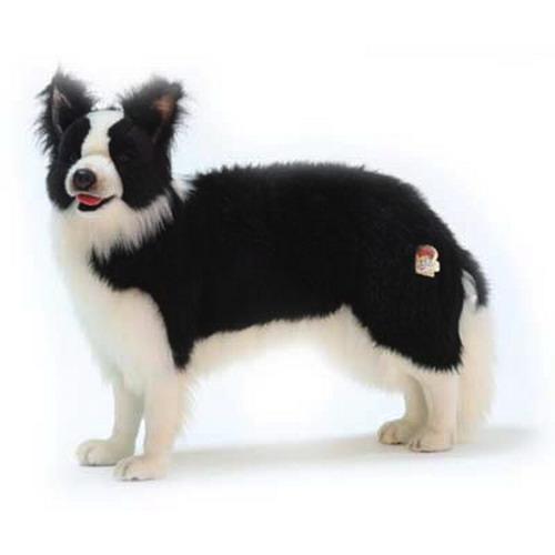 本物みたいなイヌのぬいぐるみ 価格 ボーダーコリー 送料無料 ☆送料無料☆ 当日発送可能 84cm