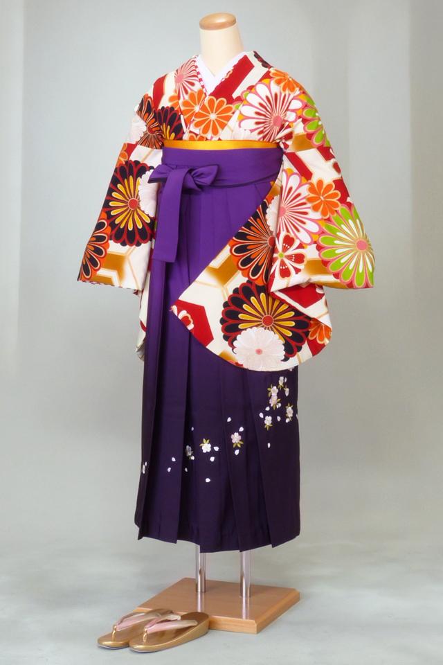 卒業式 袴 レンタル 12点セット 送料無料 gr157 亀甲柄に大輪の菊