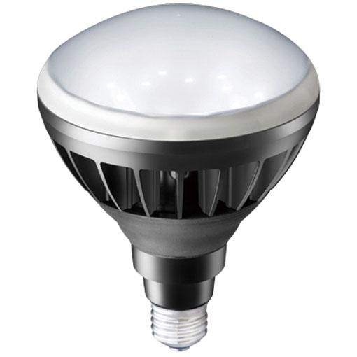 【メーカー直送】岩崎電気製 LEDアイランプ10個入 14W 〔E26口金形〕(昼白色タイプ)(黒色塗装)【屋外・屋内用】品番:LDR14N-H/B850