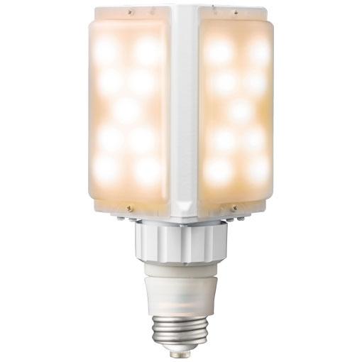 【メーカー直送】岩崎電気 ライトバルブS 62W+電源ユニット(電球色)〔E39口金〕【屋外・屋内用】品番 ランプ:LDFS62L-G-E39C  電源ユニット:WLE110V620M1/24-1