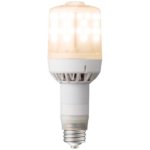 【メーカー直送】岩崎電気 ライトバルブF 79W+電源ユニット(電球色)〔E39口金〕【屋外・屋内用】品番 ランプ:LDS79L-G-E39FA   電源ユニット:WLE155V560M1/24-1