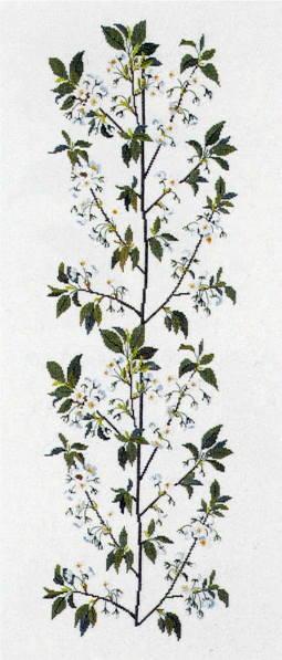 フレメ クロスステッチ刺繍キット 【桜の枝】 デンマーク 北欧 上級者 輸入 30-3933