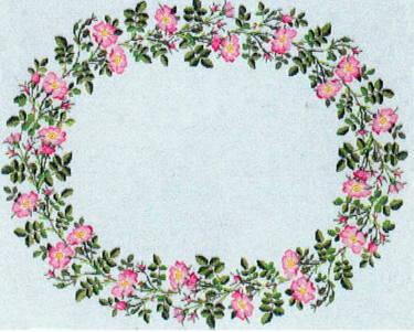 フレメ クロスステッチ刺繍キット アップルローズ デンマーク 北欧 輸入 上級者 06-5356oL