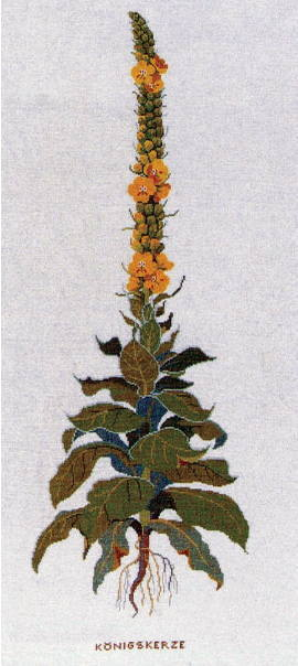 フレメ クロスステッチ刺繍キット 【モウズイカ】 輸入 デンマーク 北欧 上級者 30-4427