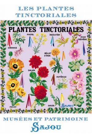 Sajou ポストカード Carte postale Plantes Tinctoriales メゾンサジュー 受賞店 フランス 葉書 CP_001_MUP_TINC 人気上昇中 サジュー グリーティングカード