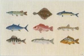 【送料無料】BAHMANN 30-9007 バーマン ドイツ Fische 魚 12B クロスステッチ 12B キット ドイツ 刺しゅう 30-9007, 世羅町:708581e1 --- sunward.msk.ru