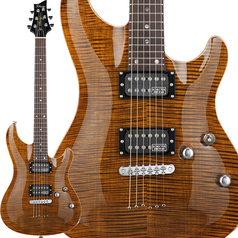 SCHECTER 《シェクター》 Rexy Series RX-2-24-CTM-TOM/BAMB 【受注生産品】