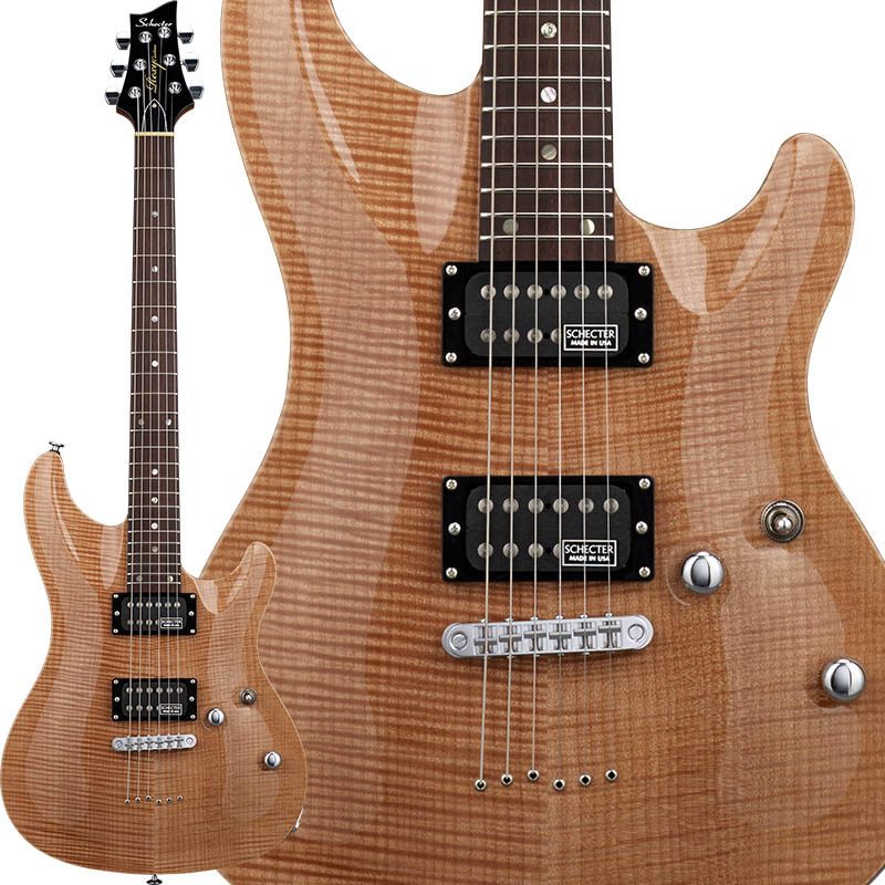 SCHECTER 《シェクター》 Rexy Series RX-2-24-CTM-TOM/ANT 【受注生産品】
