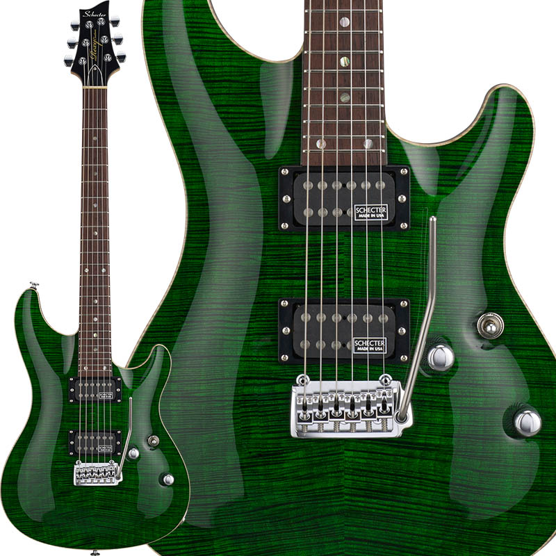 SCHECTER 《シェクター》 Rexy Series RX-2-24-CTM-VTR/BGRN 【受注生産品】