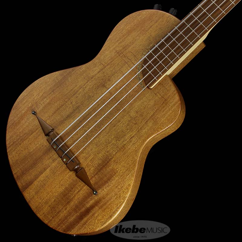 Rick Turner Guitars Renaissance Bass RB4-FL-SP (Fretless)