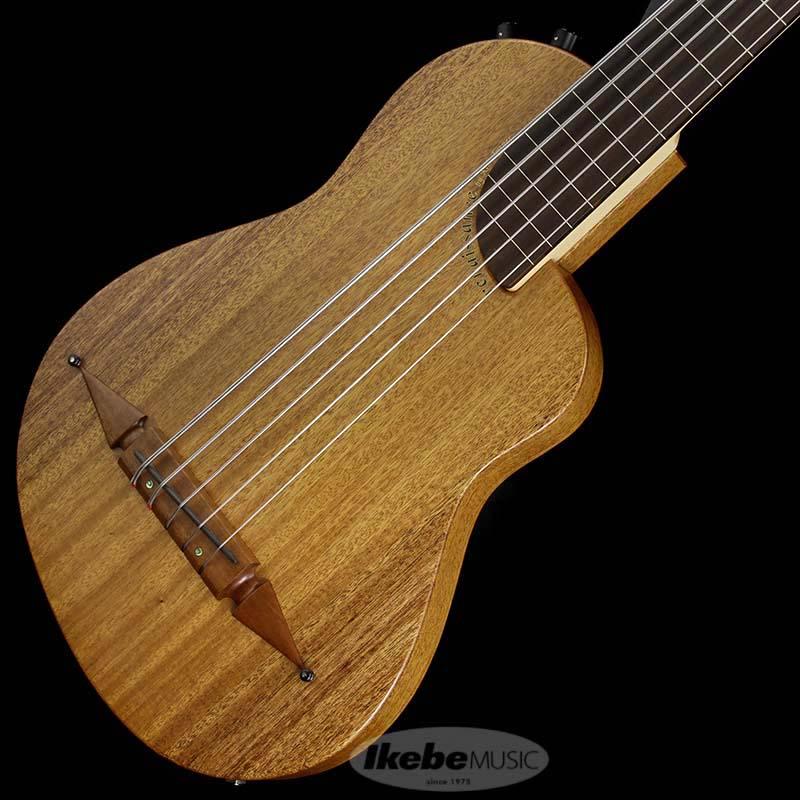 Rick Turner Guitars Renaissance Bass RB5-FL-SP (Fretless)