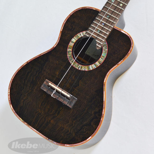 Shimo Guitars 《シモギターズ》George Tenor/All Jacaranda