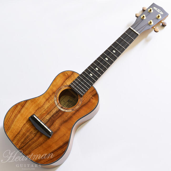 KALA 《カラ》 3KOA-CG Gloss Hawaiian Koa Concert [Made in USA]