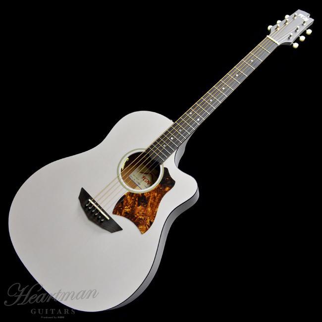 FUJIGEN 《フジゲン》 FGN Acoustic AG1E-TWF