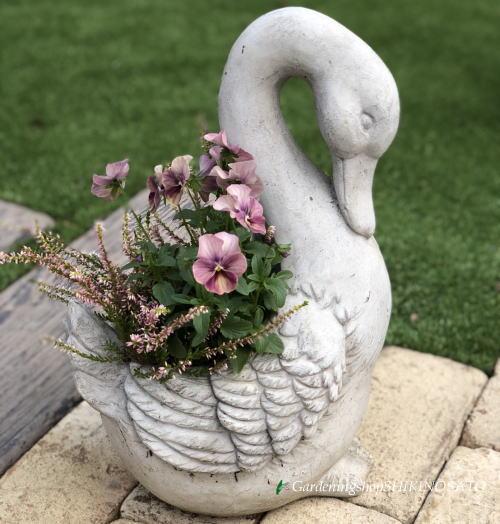【送料無料】アヒルの季節のお花寄せ植え