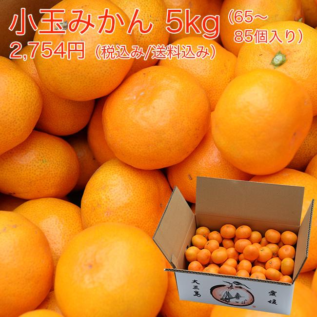 越智敬三さんの小玉みかん5キロ