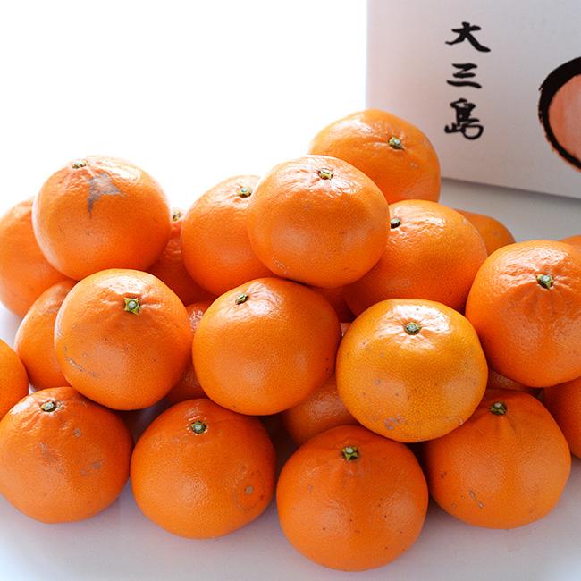 越智敬三さんのせとか家庭用5kg(20個から30個)