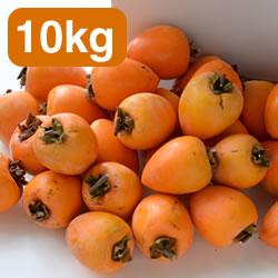 あたご柿 干し柿用渋柿 10kg