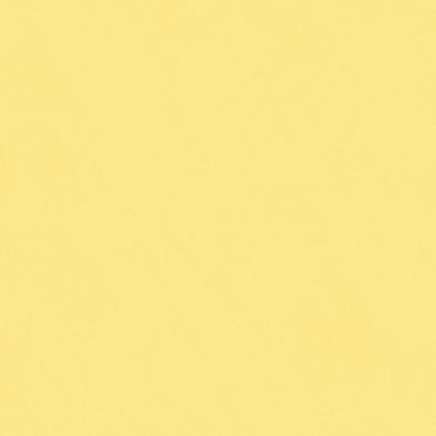 メラミン化粧板 4x8 カラーシステムフィット(アクセントカラー) K-6500KN 4x8 K-6500KN 表面エンボス(梨地)仕上, 壁紙革命賃貸でもおしゃれに:e4845fd3 --- sunward.msk.ru