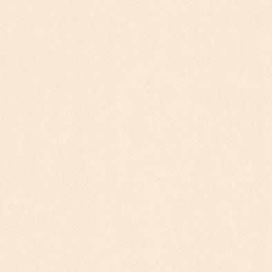 薄物メラミン不燃化粧板 アイカフレアテクト(不燃) OTF421CY 4x8