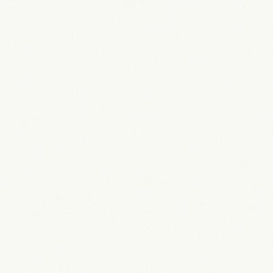 ポリエステル化粧合板 カラーフィットポリ RK-6005 4x8 表面エンボス(梨地)仕上