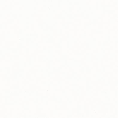 ポリエステル化粧合板 カラーフィットポリ RK-6007 4x8 表面エンボス(梨地)仕上
