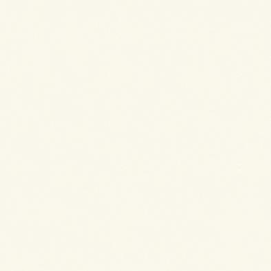 ポリエステル化粧合板 カラーフィットポリ RK-6009 4x8 表面エンボス(梨地)仕上